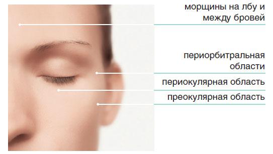 Области нанесения препаратов биоревитализации - Верхяя часть лица